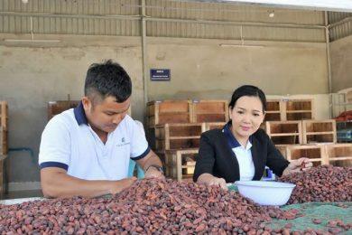 Cacao-Mekong-1